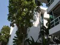 4 bdr Villa for sale in Bangkok - Sathorn