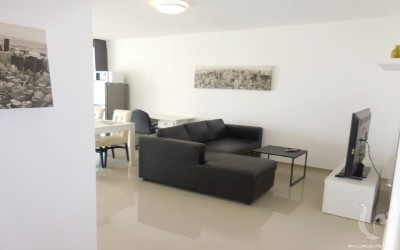 Cute & Newly Renovated Condominium for Sale Close to the City