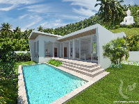 2 bdr Villa for sale in Samui - Chaweng Noi